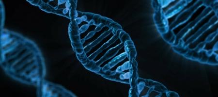 Una nuova tecnica per modificare l'RNA in modo reversibile